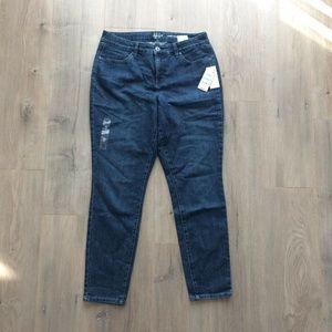 Style&Co Curvy Fit Skinny Leg Jeans Denim Harrican